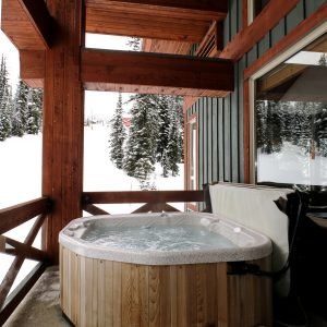Stgonebridge Lodge Hot Tub