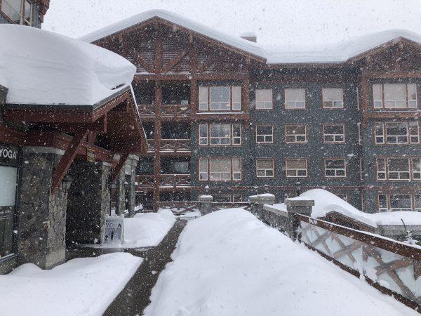 Snowing heavily outside Stonebridge Lodge